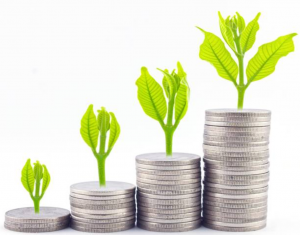 investment metaphor 300x235 - Latest News