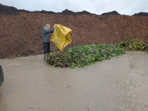 Brixton Compost YCE CF funded 300x225 - Latest News