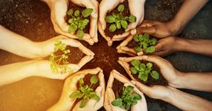 Environment YCE Community Fund 2020 300x158 - Latest News