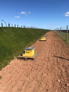 Solar beehives in situ 225x300 - Latest News